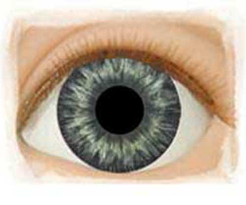 Real Eyes 20mm Medium Blue Gray