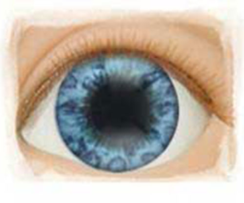 Real Eyes 24mm Beautiful Blue