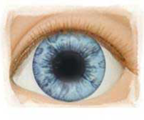Real Eyes 20mm Light Blue LE