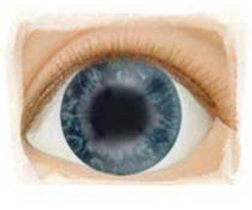 Real Eyes 22mm Newborn Darling LE
