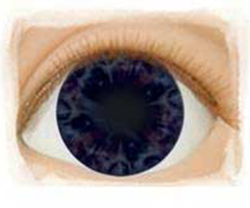 Real Eyes 20mm Newborn Ultra Dark Darling Blue LE