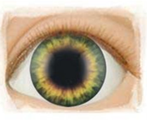 Real Eyes 20mm Sunrise Green